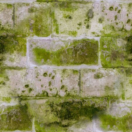seamless old stone brick wall with green mold and moss texture. background, architecture.