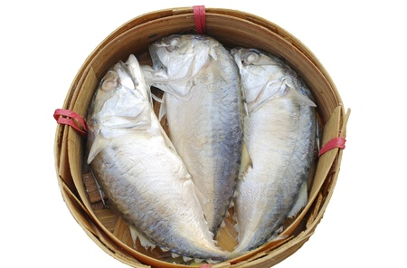 Three Mackerel fish in basket on white background photo