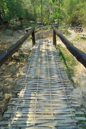 Bamboo bridge in forest photo
