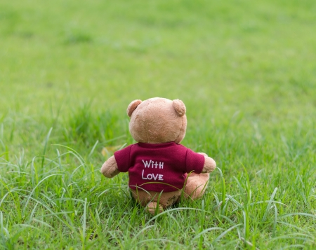 TEDDY BEAR brown color wear red shirt with love sitting on grass Banco de Imagens