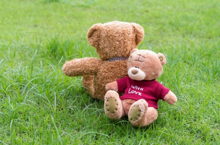 Two TEDDY BEAR brown color sitting on grass
