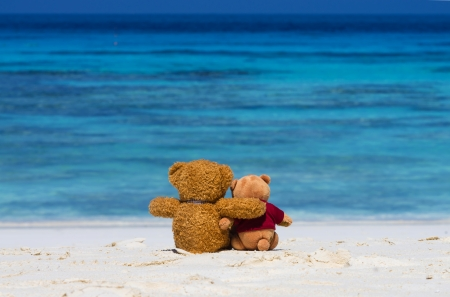 Two TEDDY BEAR brown color sitting on the beautiful beach with blue sea and sky