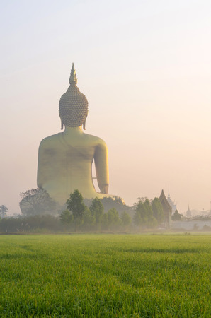 The Big Buddha at Wat Muang Temple with fog and grass when sunrise, Angthong, Thailand photo