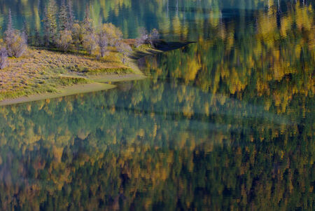 yellow and green autumn,abstract reflection in the lake photo