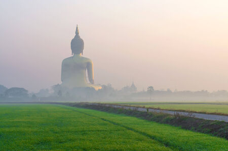 angthong: The Big Buddha at Wat Muang Temple with fog and grass when sunrise, Angthong, Thailand Stock Photo