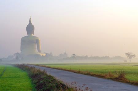 angthong: The Big Buddha at Wat Muang Temple with fog and tree, Angthong, Thailand