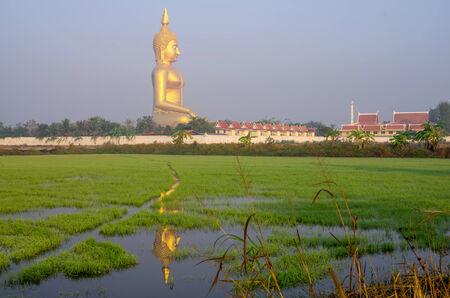 The Big Buddha at Wat Muang Temple, Angthong, Thailand photo