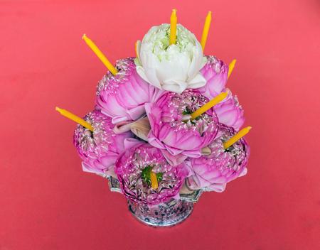 panicle: a pink lotus Panicle