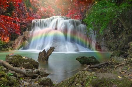 cataract waterfall: Beautiful waterfall in the forest