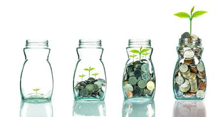 Mélanger pièces de monnaie et des semences dans blottle clair sur fond blanc, le concept de la croissance des investissements des entreprises