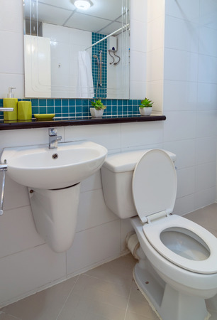 Luxury Interior bathroom photo