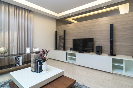 modern living room: Luxury Interior living room