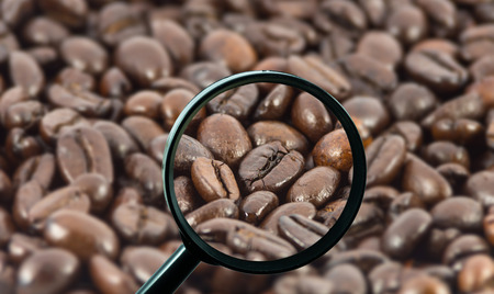 magnifying glass with background of roasted coffee beans, food and drink with business concept photo
