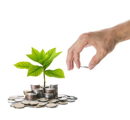 coins: Hand holding and adding a coin on the stacks of mix coins with seed on white background, Business investment growth concept Stock Photo