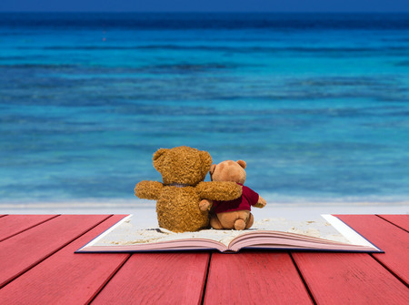 vintage teddy bears: Open book image of two teddy bear brown color sitting on the beautiful beach with blue sea and sky Stock Photo