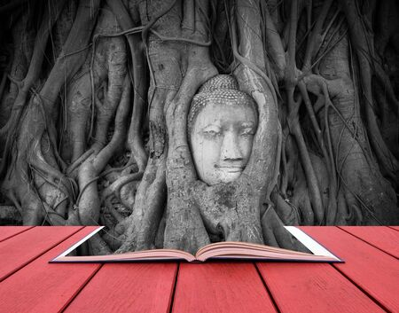 art book: conceptual book image of Head of sand stone buddha in a tree at Wat Mahathat, Ayutthaya, Thailand, public temple