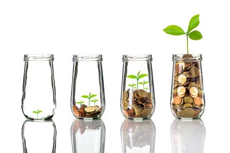 Las monedas de oro y semillas en botella transparente sobre fondo blanco, el concepto de crecimiento de la inversión de negocios