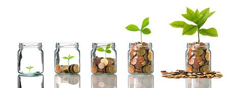 Monete e seme di oro in chiara bottiglia su fondo bianco, concetto di crescita di investimento aziendale Archivio Fotografico - 50783235