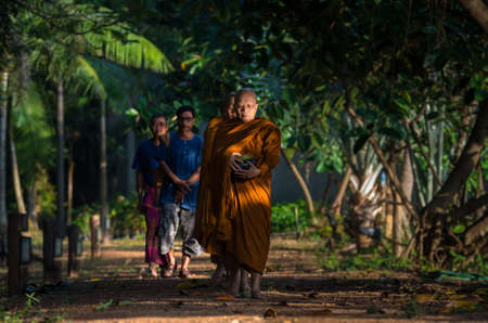 october 31: NAKHON RATCHASIMA, THAILAND - OCTOBER 31: Undefined monks are walking before recieve for alms from people Buddhist in deep forest walkway on October 31,2015 in Nakhon ratchasima, Thailand. Editorial
