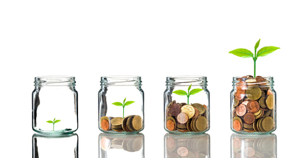 clear bottle: Gold coins and seed in clear bottle on white background,Business investment growth concept