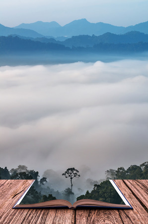 wood grass: Conceptual book image of beautiful scenary of mist with mountain range at PanoenThung view point in Kaeng Krachan national park,Thailand