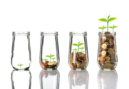 crecimiento planta: Las monedas de oro y semillas en botella transparente sobre fondo blanco, el concepto de crecimiento de la inversión de negocios Foto de archivo