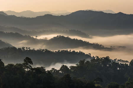 scenary: beautiful scenary of mist with mountain range at PanoenThung view point in Kaeng Krachan national park,Thailand,warm white balance