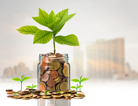 clear bottle: Gold coins and seed in clear bottle on photo blurred cityscape background,Business investment growth concept