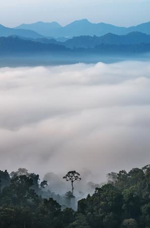 kaeng: beautiful scenary of mist with mountain range at PanoenThung view point in Kaeng Krachan national park,Thailand