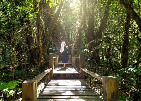 catholic nuns: catholic senior nun praying at Beautiful rain forest at ang ka nature trail in doi inthanon national park, Thailand