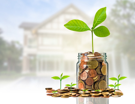 clear bottle: Gold coins and seed in clear bottle on photo blurred house background,Business investment growth concept