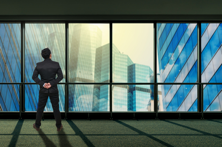 megalopolis: Back side of Businessman looking megalopolis through window, Business concept