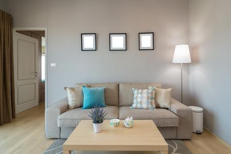 clean floor: Luxury Interior living room