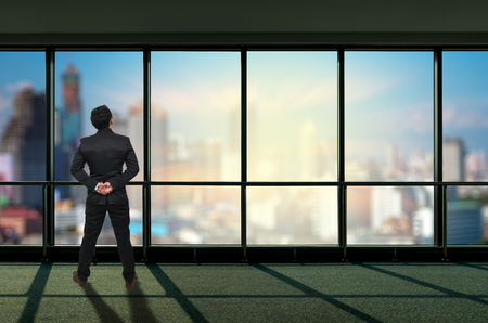 through window: Back side of Businessman looking megalopolis through window, Business concept