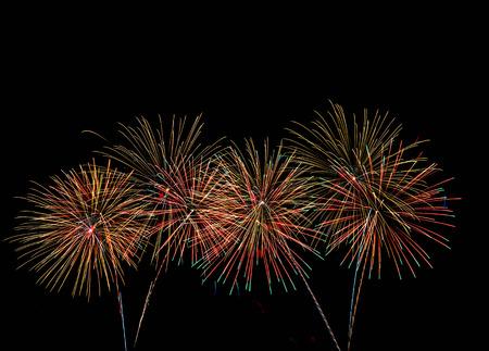 dark sky: Multicolor Firework Celebration