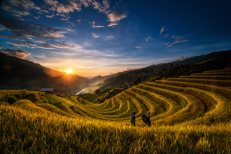 Two undefined Vietnamese Hmong are walking in the fantastic landscape of rice field terrace for prepare harvest when sunrise at Northwest Vietnam. Mu Cang Chai, Yen Bai province, Vietnam 新聞圖片