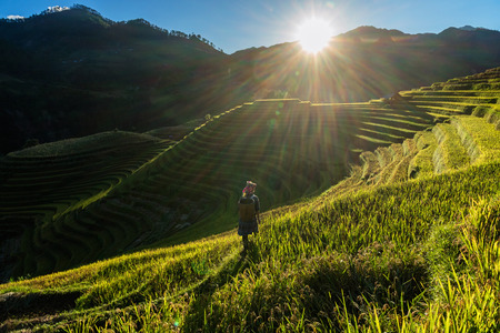 Undefined Vietnamese Hmong children are walking in rice terrace when the sunset time with lens flare at mam xoi of mu cang chai district,Yenbai province, northwest of Vietnam. Stock Photo
