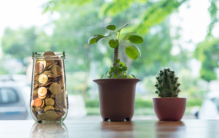 Gold coins in clear bottle with Cactus in pot on the wooden table over the photo blurred background, Business investment growth concept Stok Fotoğraf