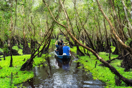 traveler sightseeing over the traditional boat in tra su forest, Mekong Delta travel, vietnam Stock fotó