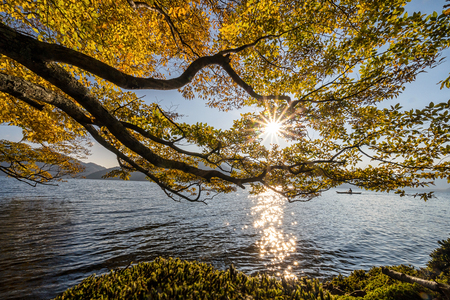 Scene of autumn season with sun beside the lake which have Undefined Traveler kayaking around lake at nikko, japan, landscape and sport concept