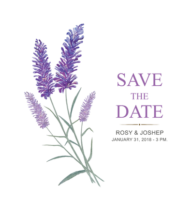 Lavender flowers watercolor elements. Collection of floral and leaves on a white background. Drawing watercolor design for save the date, invitation, wedding or greeting cards.