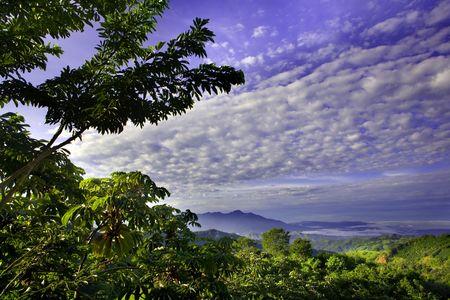 forest and clouds in costa rica Standard-Bild