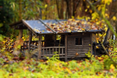 wooden cottage in the forest  used for hunting