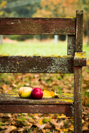 Apples and leaves on a bench in the orchard Stock Photo