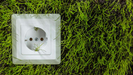 Socket on green grass, suggesting green energy