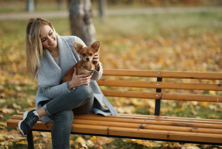 young beautiful woman in the park with her funny long-haired chihuahua dog. Autumn background