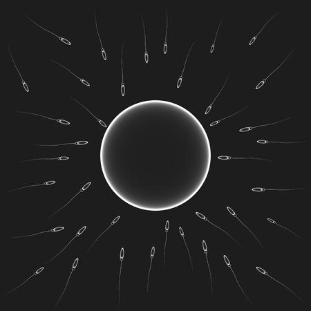 Natural insemination: sperm fertilizing egg cell. Vector