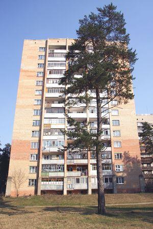 erect: pine against the apartment building