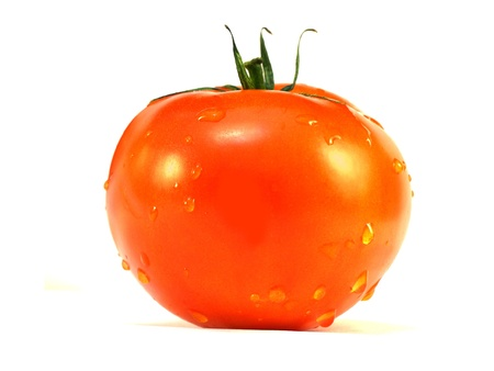 The image of tomato under the white background Stock Photo - 8240465