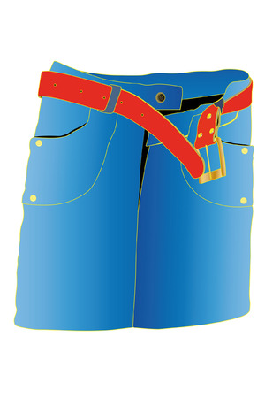 illustration of skirt under the white background Vector
